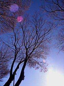 お正月の晴れ渡った空