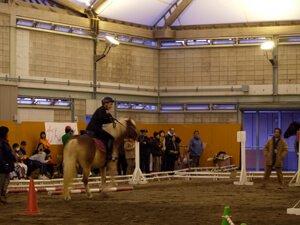 「ハローヒポ乗馬大会2008」 競技会の様子